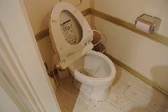 東京都内ショップトイレ便器の洗浄ガラスコーティング(防汚)
