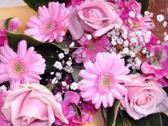 ピンクの花束(春うらら)