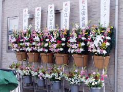 豪華な開店用生花(二段式):1対