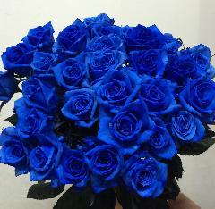 30本のバラの花束「ブルー」