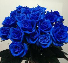 20本のバラの花束「ブルー」