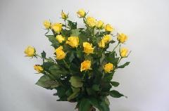 20本のバラの花束