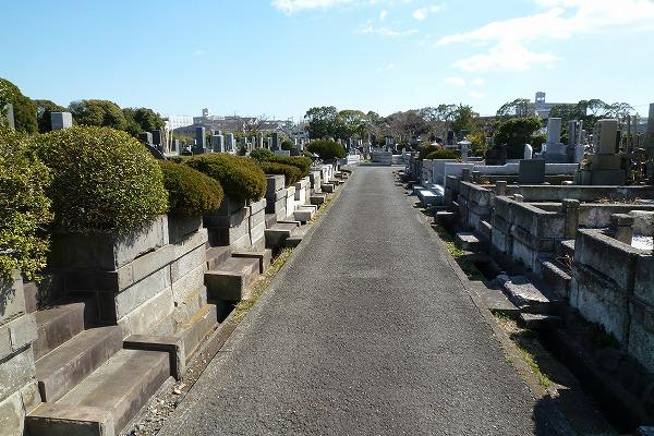 墓地現地確認