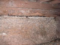 床下 イエシロアリ被害写真 泉佐野市