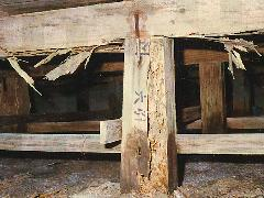 風呂場の材木くされでシロアリ被害増大