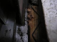 アメリカカンザイシロアリの被害写真 尼崎市
