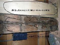 テラスハウスのシロアリ被害写真