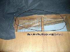 長屋のシロアリ駆除画像