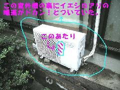 室外機裏からイエシロアリ退治写真 和歌山県
