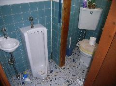トイレから羽アリ飛び出しシロアリ退治 河内長野市