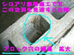 マンションのシロアリ退治 柱スカスカ 大阪市住吉区
