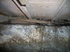 クローゼットの床が抜け落ち寸前 シロアリ被害